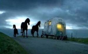 Home_horses2_4